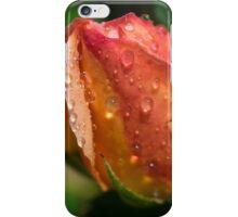Apricot Rose Bud iPhone Case/Skin