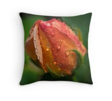 Apricot Rose Bud Throw Pillow