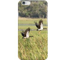 Magpie Geese iPhone Case/Skin