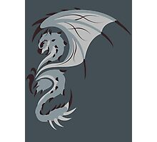 Reign of Heavens - Silver Rathalos Photographic Print