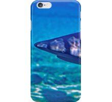 Sharks in Captivitiy iPhone Case/Skin