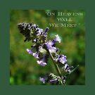 """ On Heavens Wall We meet "" by CanyonWind"