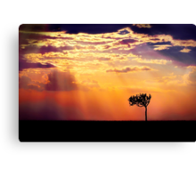 Sunset Over Masai Mara IV [Print & iPad Case] Canvas Print