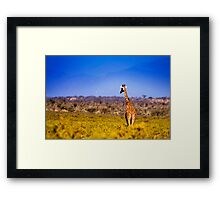 Samburu National Reserve, Kenya. 2009 Framed Print