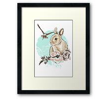 Run Rabbit Run Framed Print