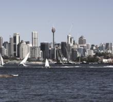 Sydney City | Greenwhich Baths Sticker