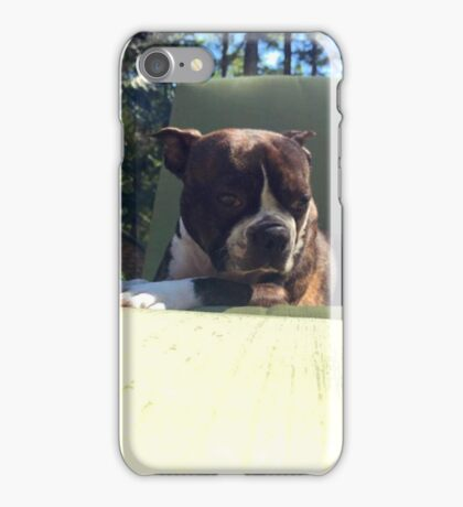 Buster The Boston  iPhone Case/Skin