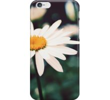 Afternoon Daisy iPhone Case/Skin