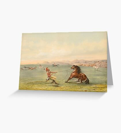 George Catlin,  Catching the Wild Horse (Plate 4); Buffalo Hunt on Snow Shoes (Plate 15); Buffalo Hunt Greeting Card