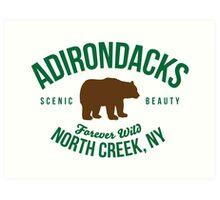 Awesome Adirondacks North Creek New York Forever Wild Bear Nature Art Print