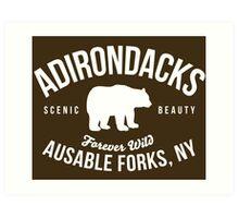 Cool Adirondacks Ausable Forks New York Scenic Beauty Bear Nature T-Shirt Art Print