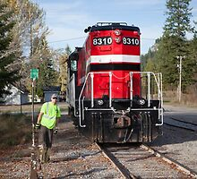 The Switch Pend Oreille Valley Railroad  by Jim Stiles