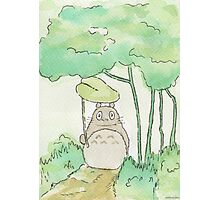 Totoro in the forest Photographic Print