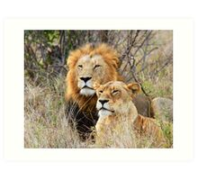A Handsome Couple in the bush ! Art Print