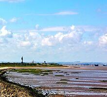Humber Estuary by Trevor Kersley