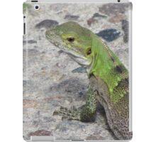 Juvenile Spiny-tailed Iguana iPad Case/Skin