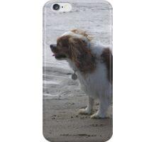 Braveheart iPhone Case/Skin