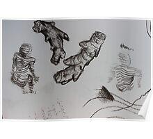 sketch book ginger body Poster