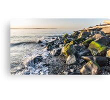 Seattle Beach Canvas Print