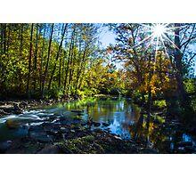 Upstream treasure Photographic Print