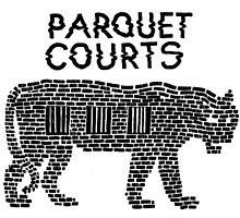 Parquet Courts by svpermassive