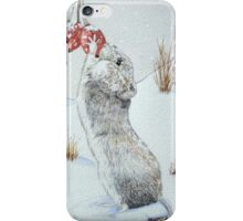 Cute mouse and red berries snow scene wildlife art   iPhone Case/Skin