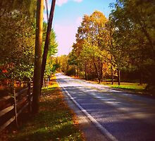Autumn Road 1.0 by PiscesAngel17