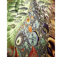 Fractal Great Barrier Reef Photographic Print