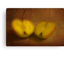 2 half apples Canvas Print