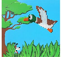 Duck Hunt Brown (Paint 'N' Beads) Photographic Print