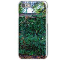 Hidden Shed iPhone Case/Skin