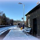 Eggesford Station in Winter by Charmiene Maxwell-Batten