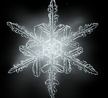 Single Snowflake by DawnOrigins