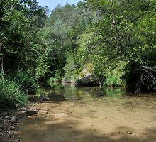 ter river by arnau2098