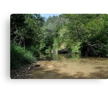 ter river Canvas Print