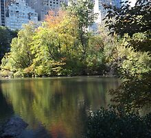 Reflection in Lake, Central Park South, New York City by lenspiro