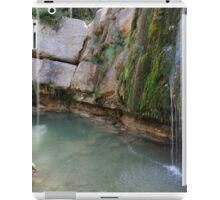 Well Campdevanol River iPad Case/Skin