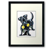 Small Black Dog Tucker Framed Print