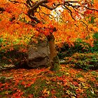 Autumn Ablaze by Brandt Campbell