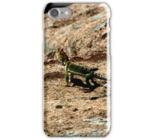 Hovenweep 27 iPhone Case/Skin
