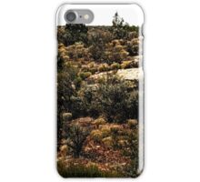 Hovenweep 31 iPhone Case/Skin