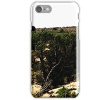 Hovenweep 32 iPhone Case/Skin