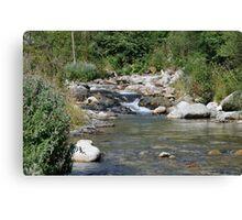 setcases river Canvas Print