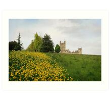 Wildflower meadows lead to Downton abbey Art Print