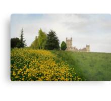 Wildflower meadows lead to Downton abbey Metal Print
