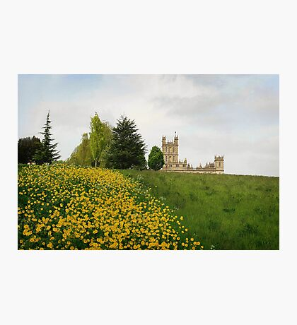 Wildflower meadows lead to Downton abbey Photographic Print