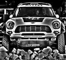 MINI - Adventure - Dakar Rally - Goodwood Festival Of Speed 2014 by m45t1n