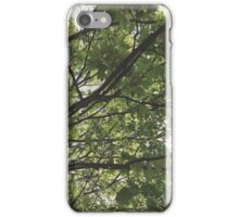 green nature iPhone Case/Skin