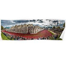 Poppies round the Tower Poster