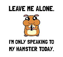 Alone Speaking Hamster Photographic Print